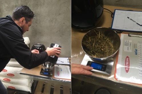 Air Fryer Method to Determine Dry Matter