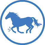 Postbiotic Horse Feed Additive - Joint Icon