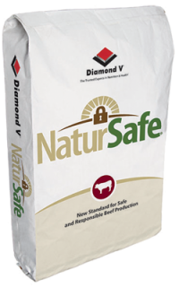 beef cattle feed additive - NutriTek