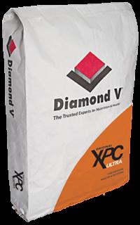 XPC Ultra Bag Artwork