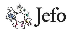 Distributor - Jefo Logo