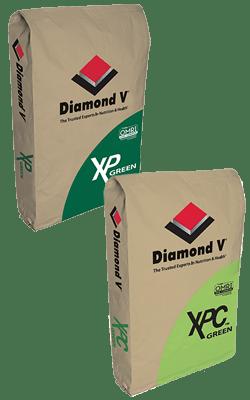XP™ / XPC® Green - Organic Image