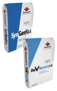 SyngenX LS / Dia-V Nursery non-gmo piglet feed additive